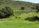 La industria cántabra gastó 42,4 millones en protección medioambiental